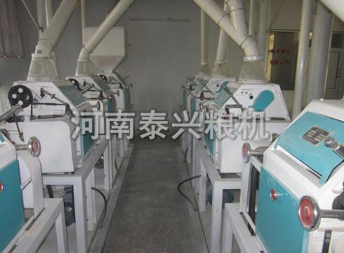 荞麦面加工设备